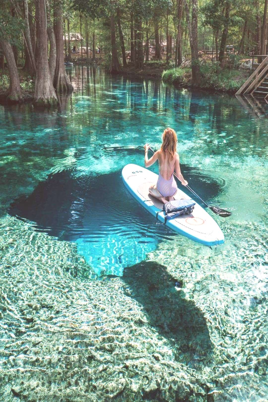 Paddle boarding in Florida looks so relaxing Ever Changing Horizon